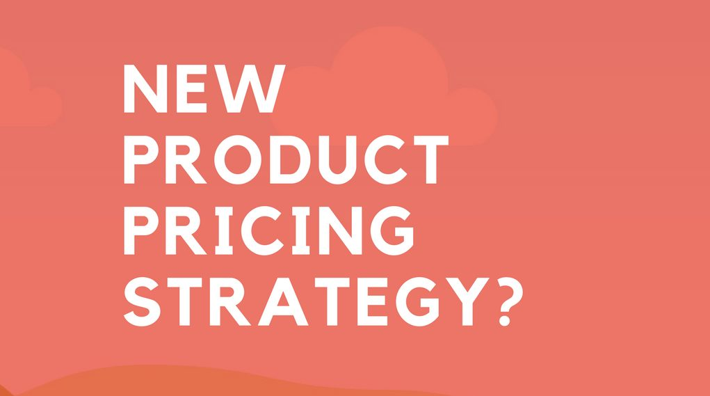 Pricing Strategy for Your Product or Service